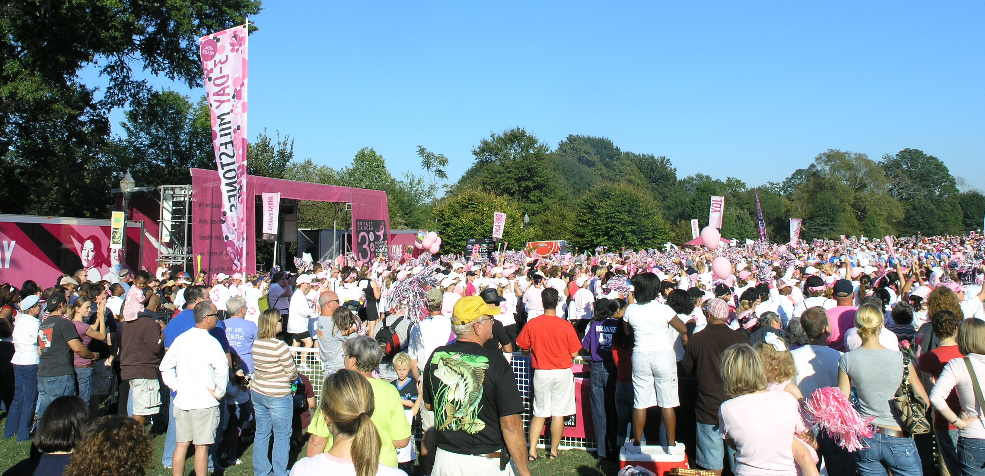 Susan G Komen 3-Day for the Cure - Wikipedia
