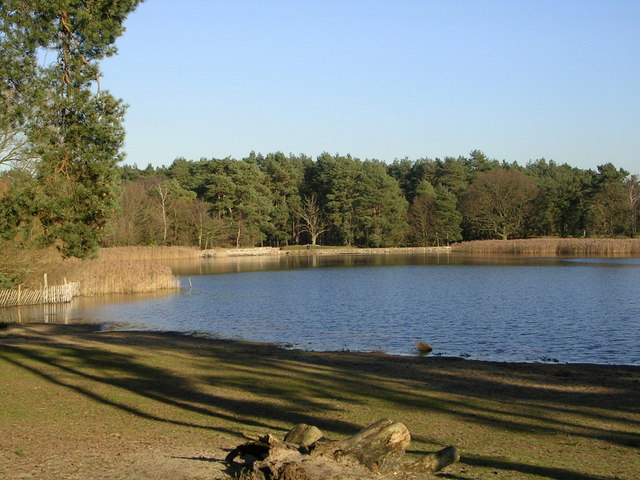 Frensham Little Pond - geograph.org.uk - 582793
