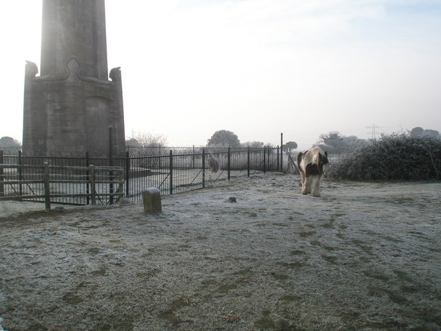 Friendly horse by the Nelson Monument, Portsdown Hill - geograph.org.uk - 1114467