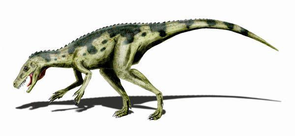 Soubor:Herrerasaurus BW.jpg