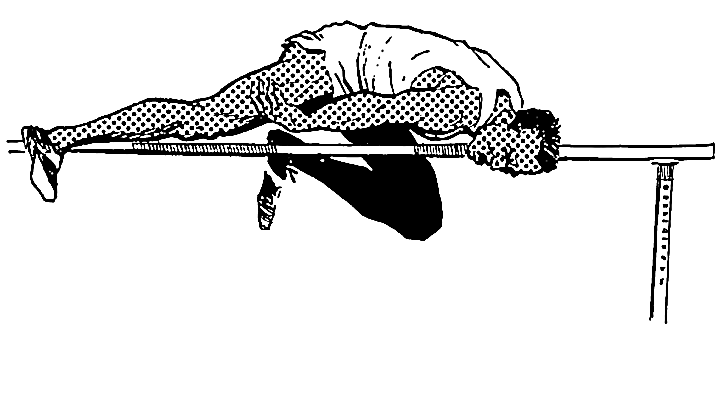 High Jump History File High Jump Psf Png