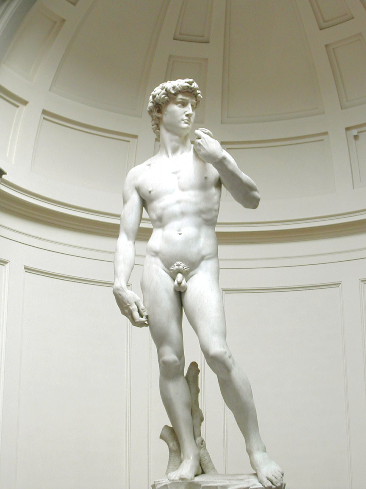 http://upload.wikimedia.org/wikipedia/commons/6/63/Michelangelos_David.jpg