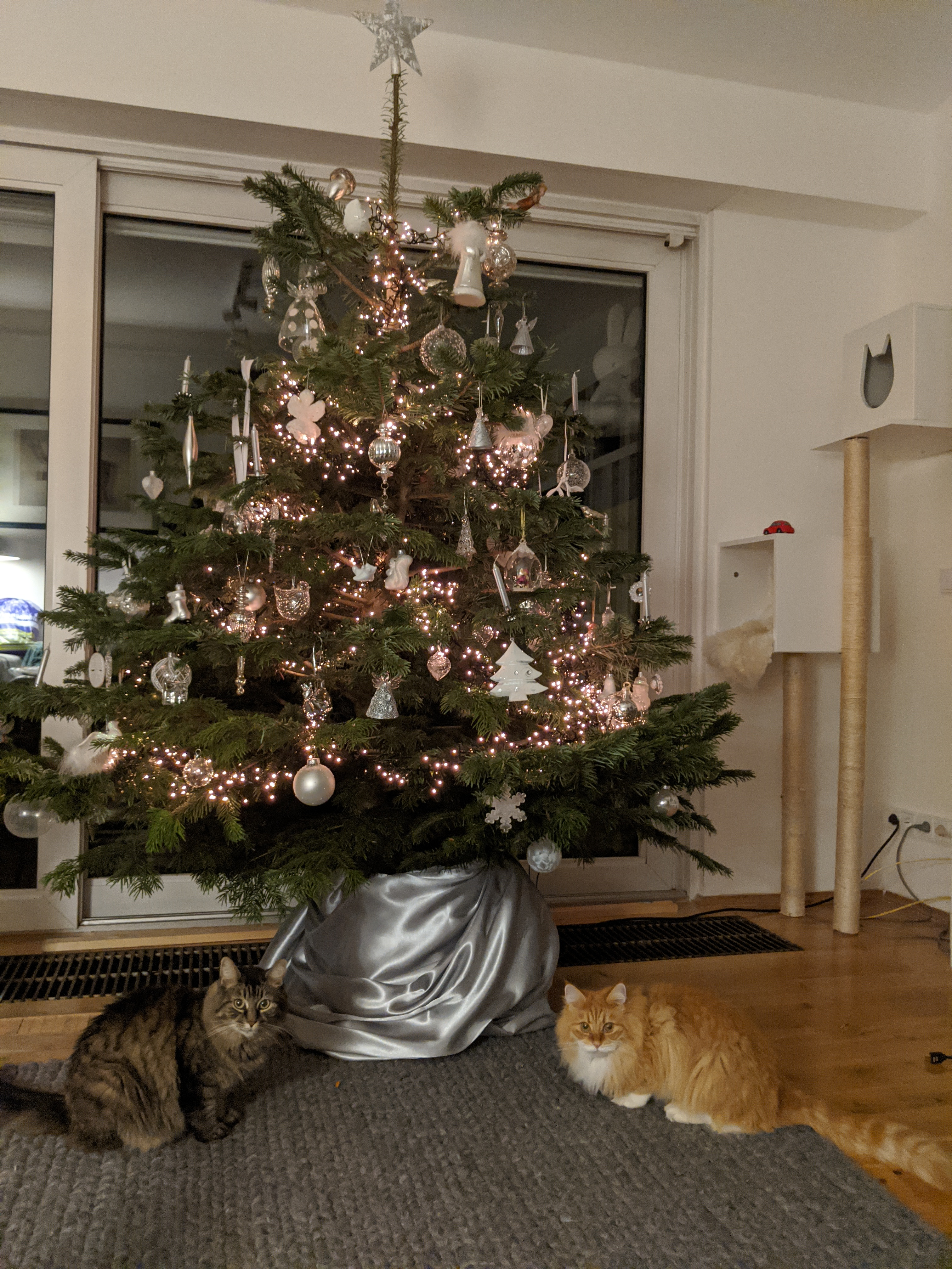 Christmas tree 2019, installed by Neozoon, decoration by Neozoon wife and daughter, Lotje and Oliva tricked to sit under the tree by cat snacks as treat