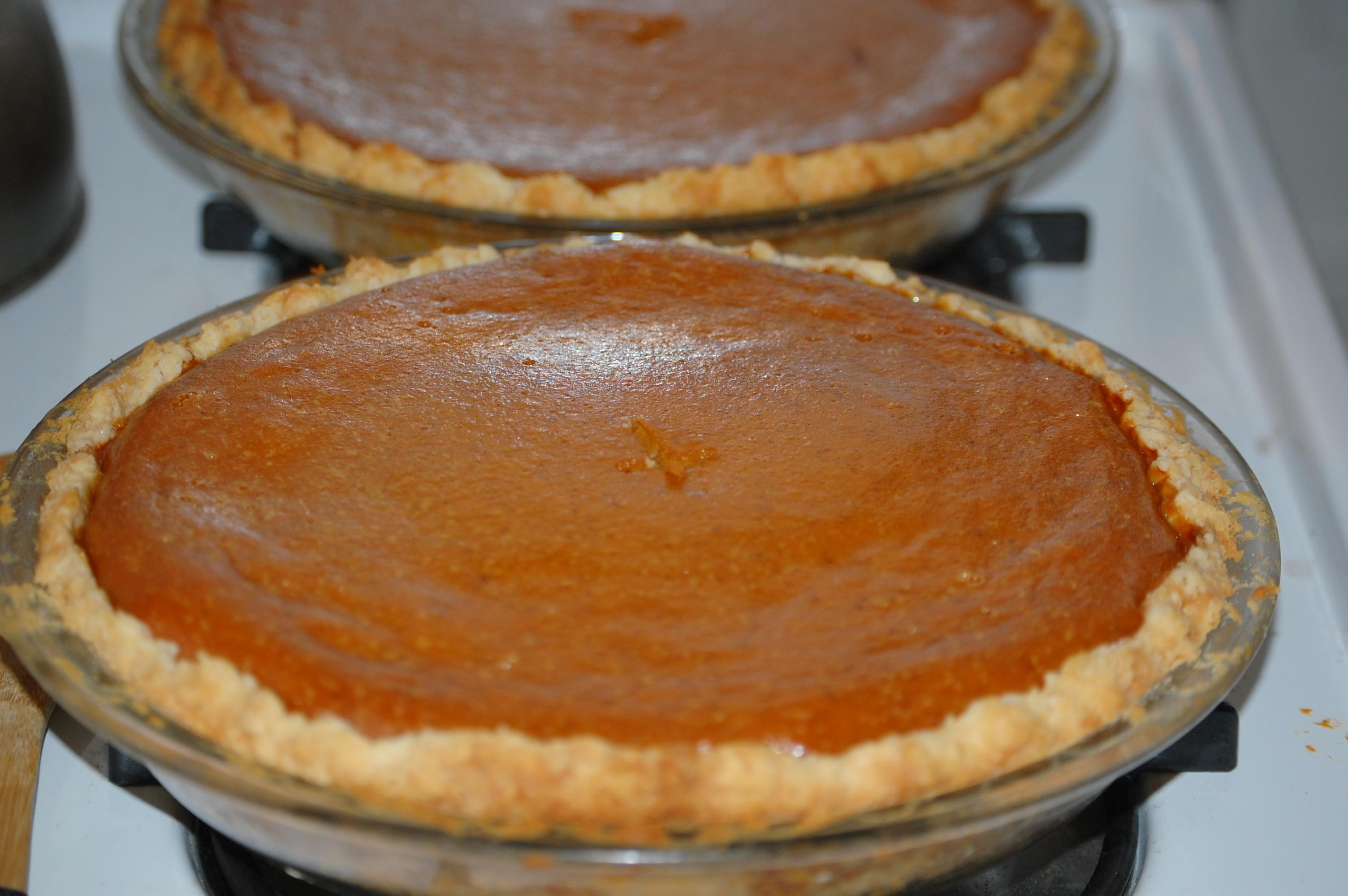 File Pumpkin Pies November 2008 Jpg Wikimedia Commons