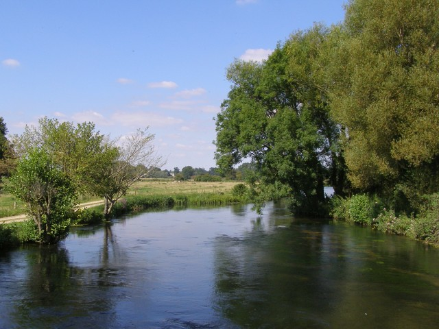 River Test in summer - geograph.org.uk - 537144