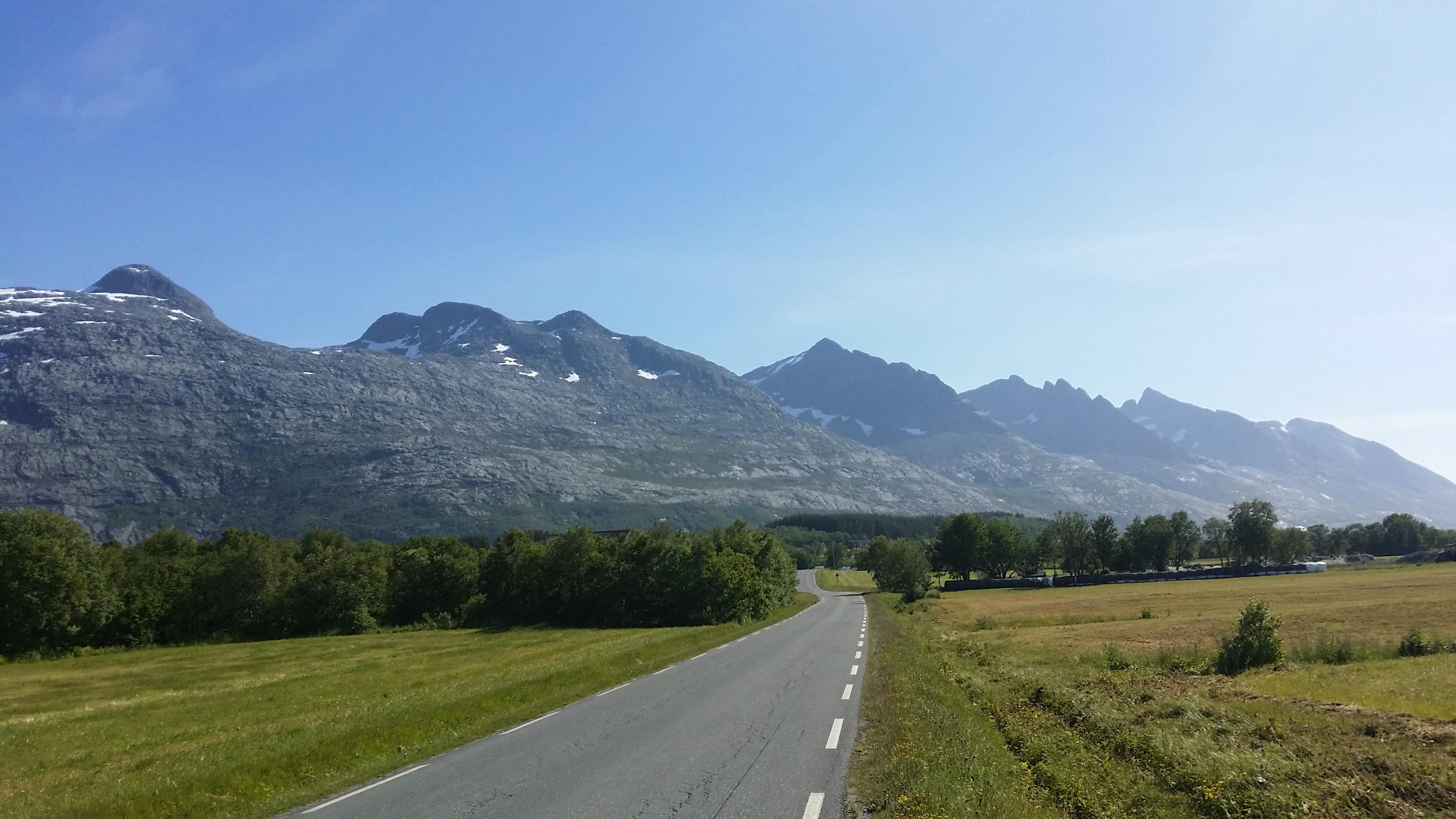 Helgeland Skogselskap – Alstahaug Planteskole – Skog skogbruk skogplanting tømmer