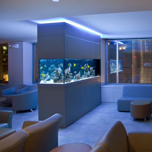File saltwater fish tanks saltwater for Decoration maison aquarium