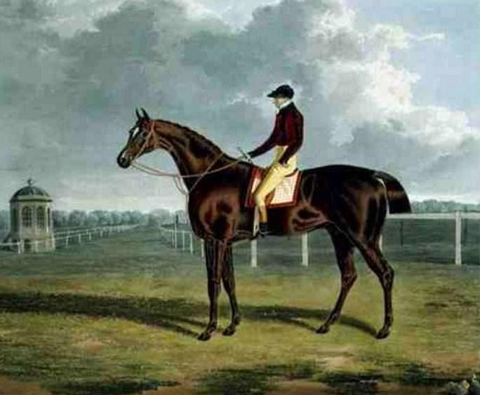 st patrick  horse