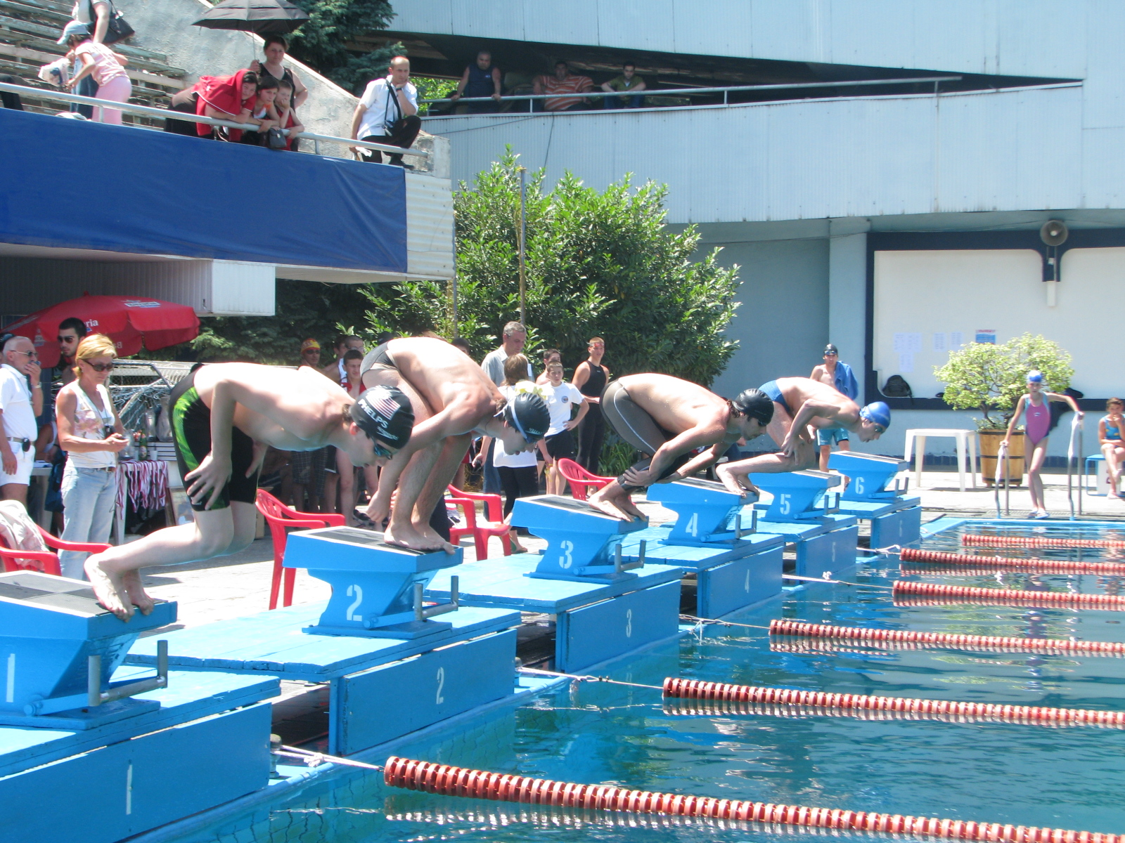 File Swimmers Diving Off Starting Blocks Doing Free Colchian Wikimedia Commons