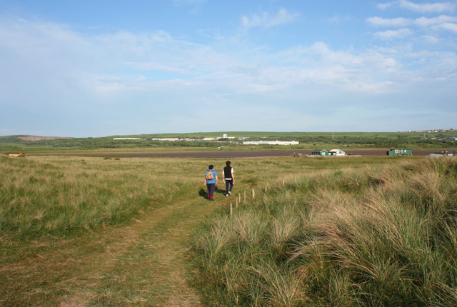 Track on Lowsy Point - geograph.org.uk - 850007