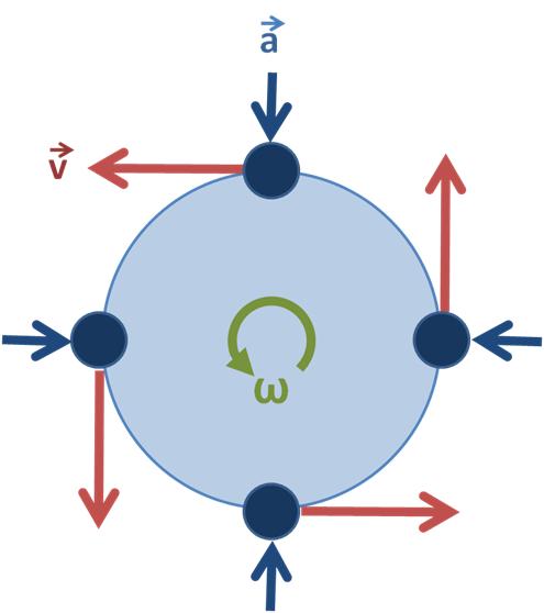 File:Uniform circular motion.PNG