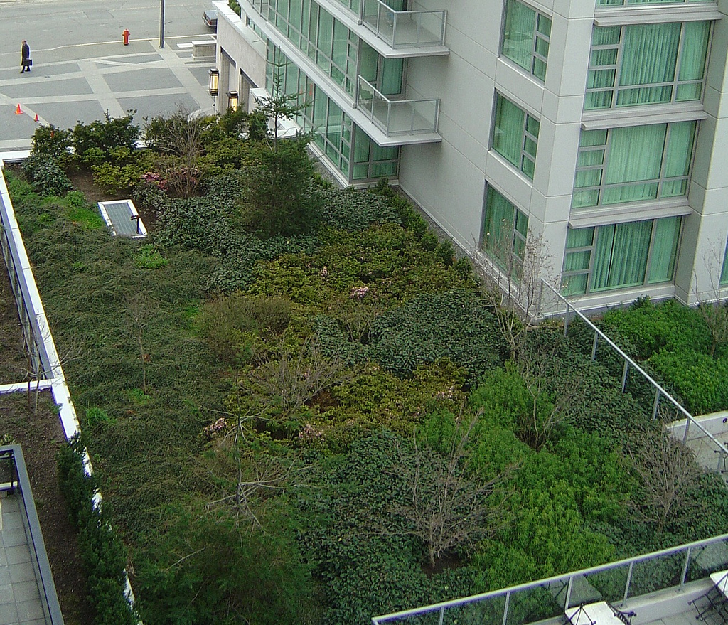 File victoria bc marriott green wikimedia commons - House and garden onsquare meters ...