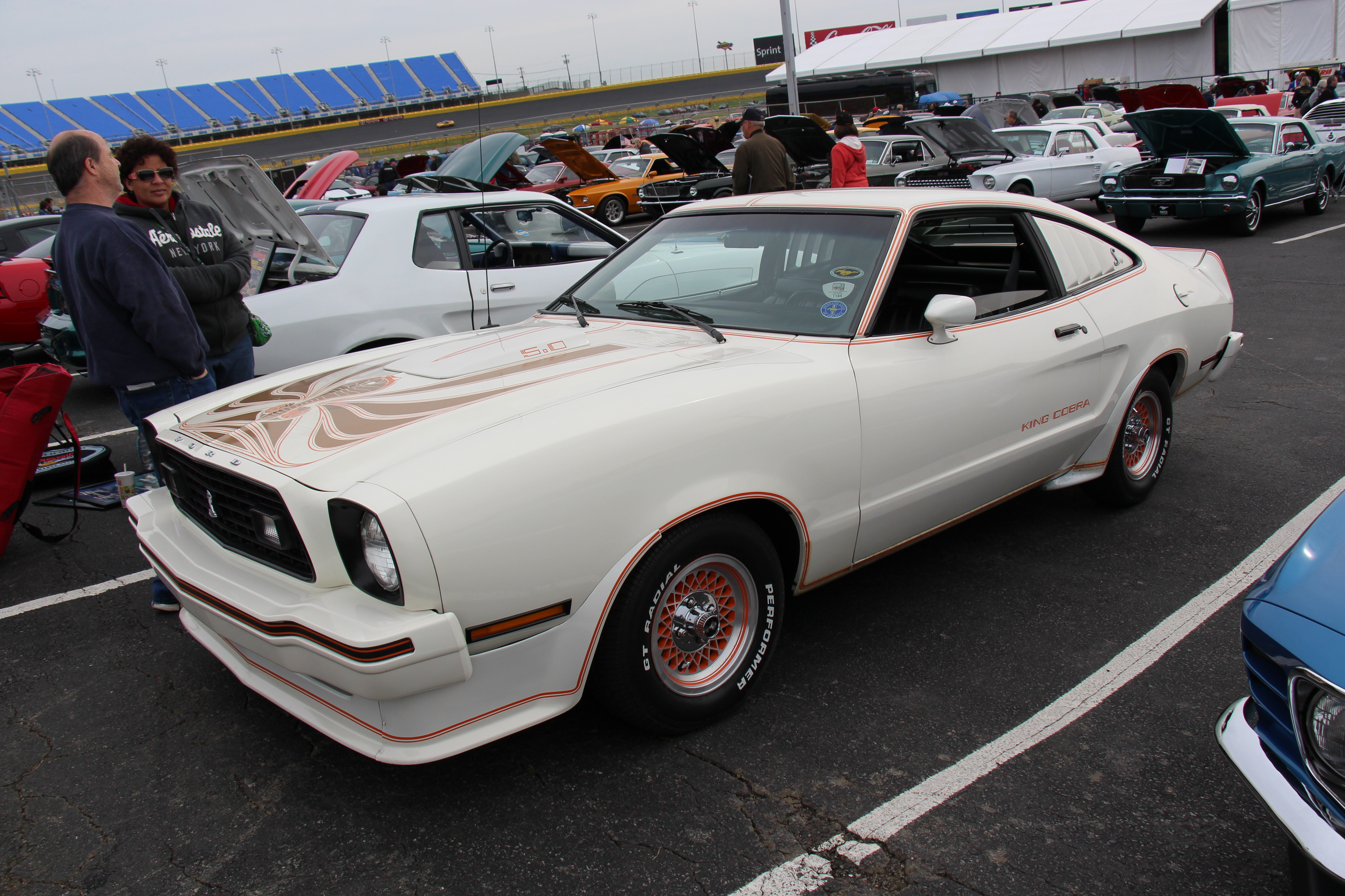 File1978 Ford Mustang King Cobra 14370223419