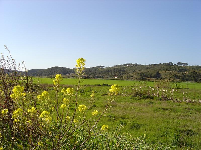 Imagem:2007.03.23.pt.Aljezur.Odeceixe.RibeiraSeixe.jpg