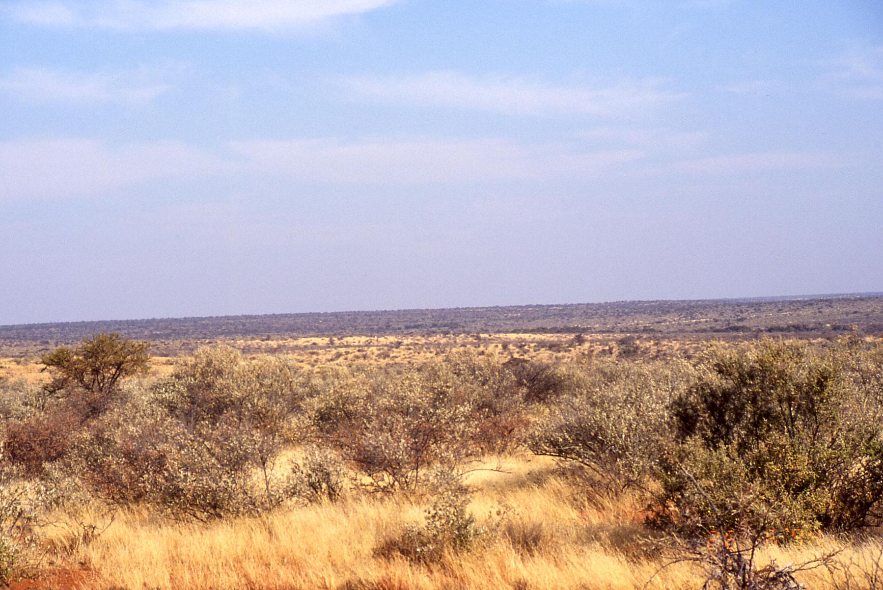 File:African.landscape.jpg - Wikimedia Commons