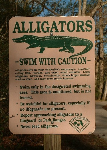 file alligator warning sign near swimming area at edward ball