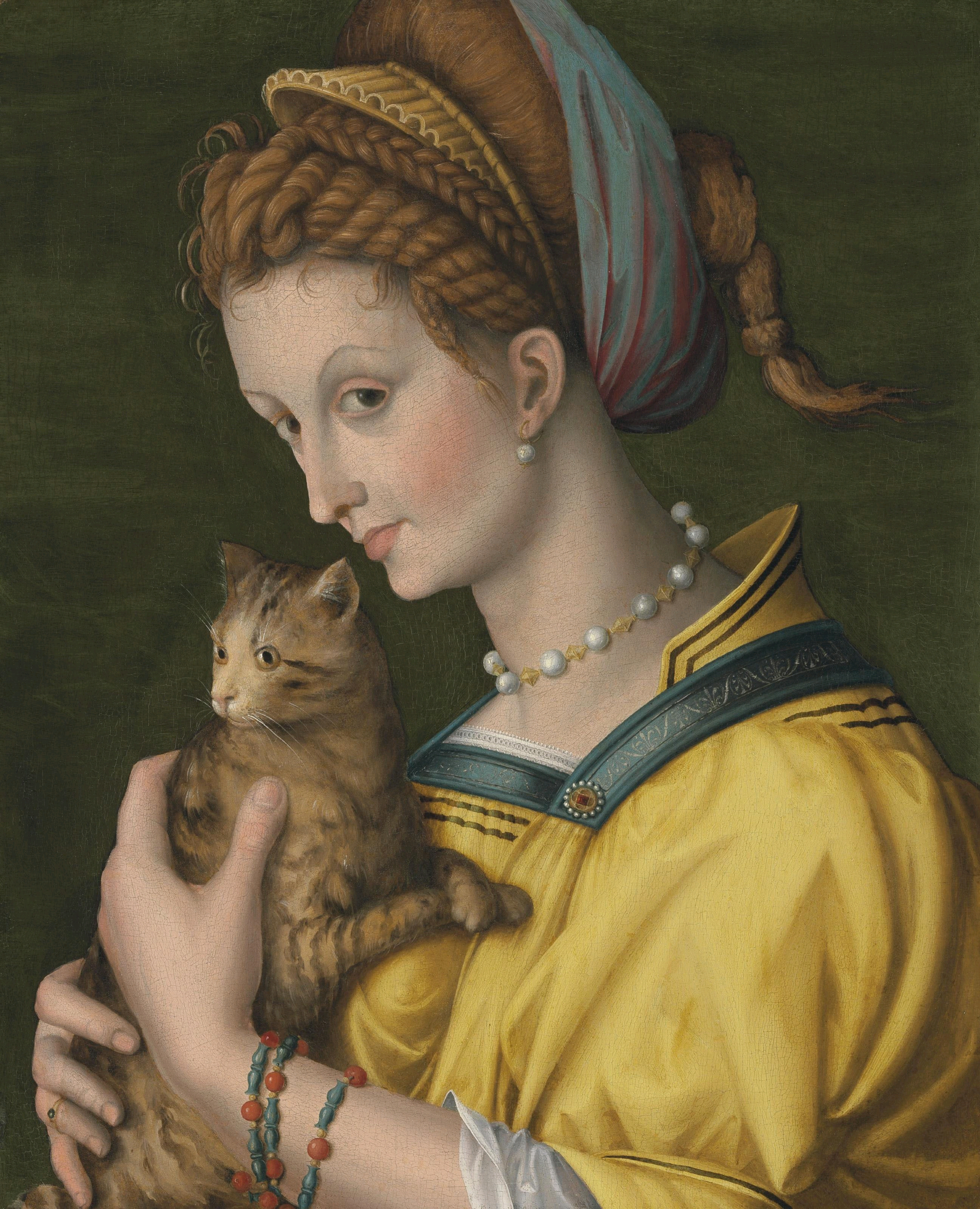 File:bacchiacca  Portrait Of A Young Lady Holding A Catg