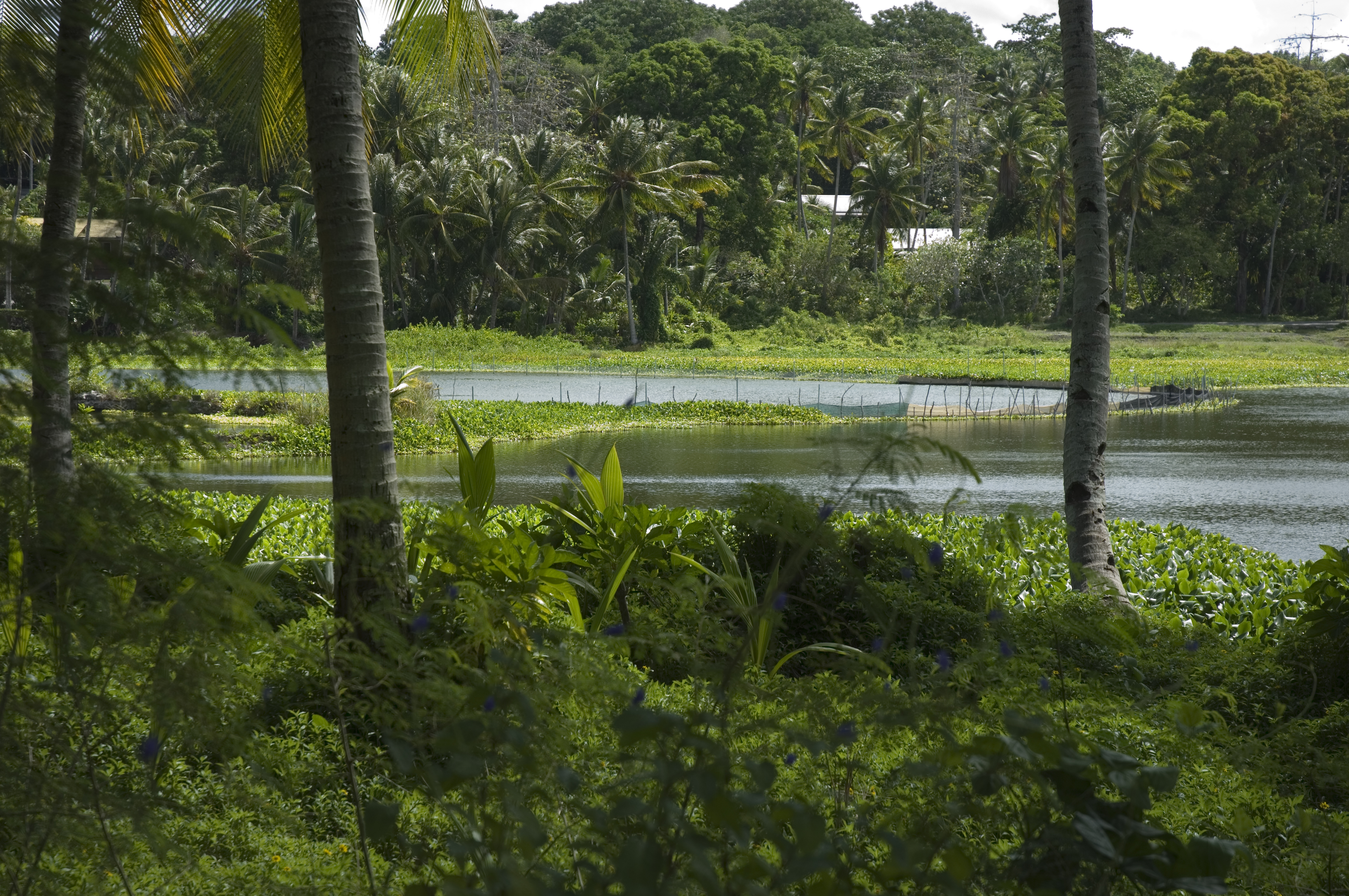 Buada-Lagune
