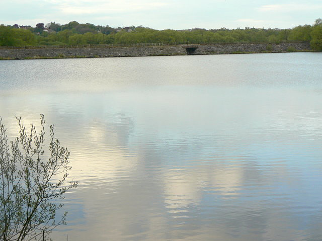 Butterley Reservoir - geograph.org.uk - 1307438