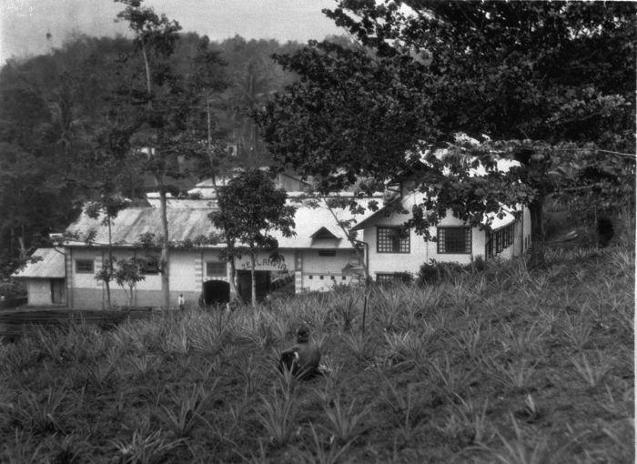 File:COLLECTIE TROPENMUSEUM De rubberfabriek 'Zeelandia' ten noorden van Tanggoel op Oost-Java TMnr 60009870.jpg