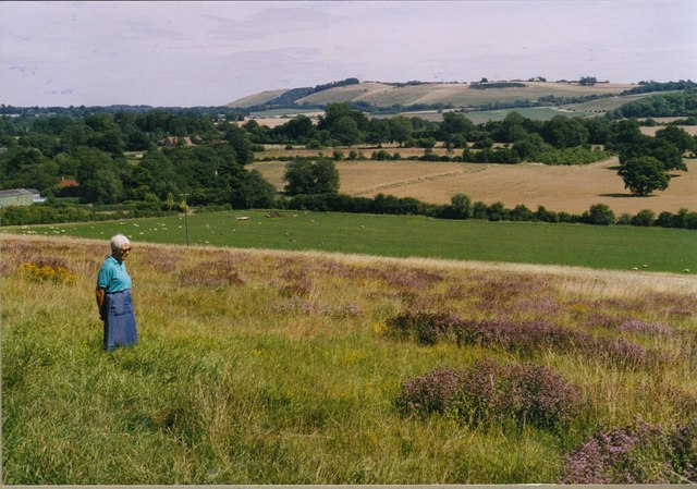 Carvers Hill Farm looking across to Ham Hill escarpment - geograph.org.uk - 1062104