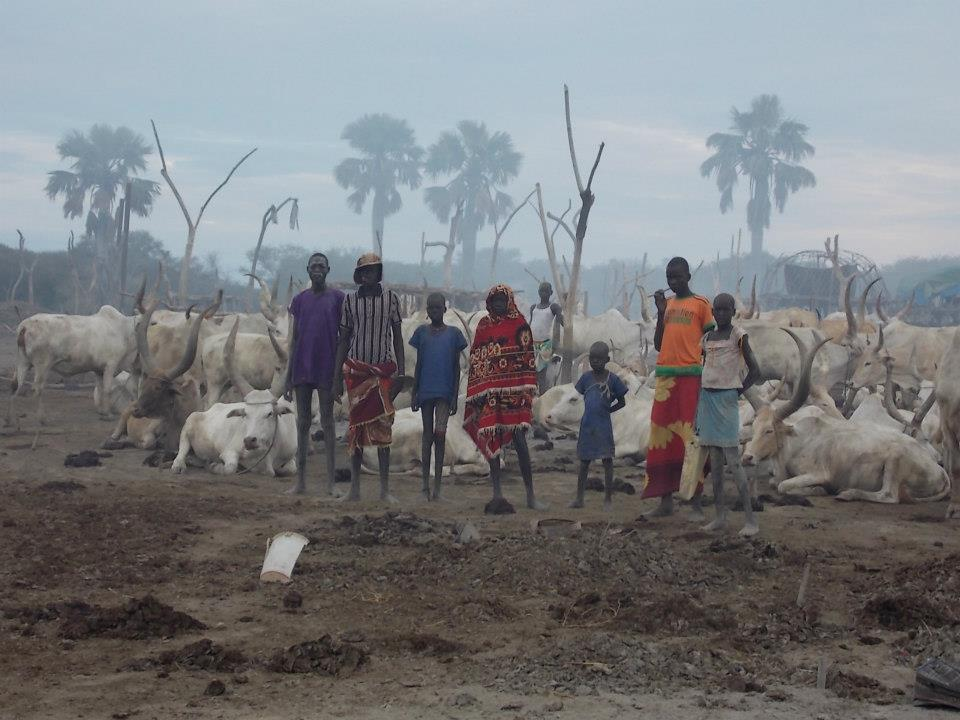 file cattle herders at cattle camp in rumbek  south sudan