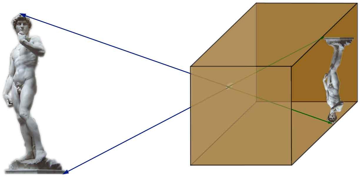 File Chambre Noire Pour Homothet Jpg Wikimedia Commons