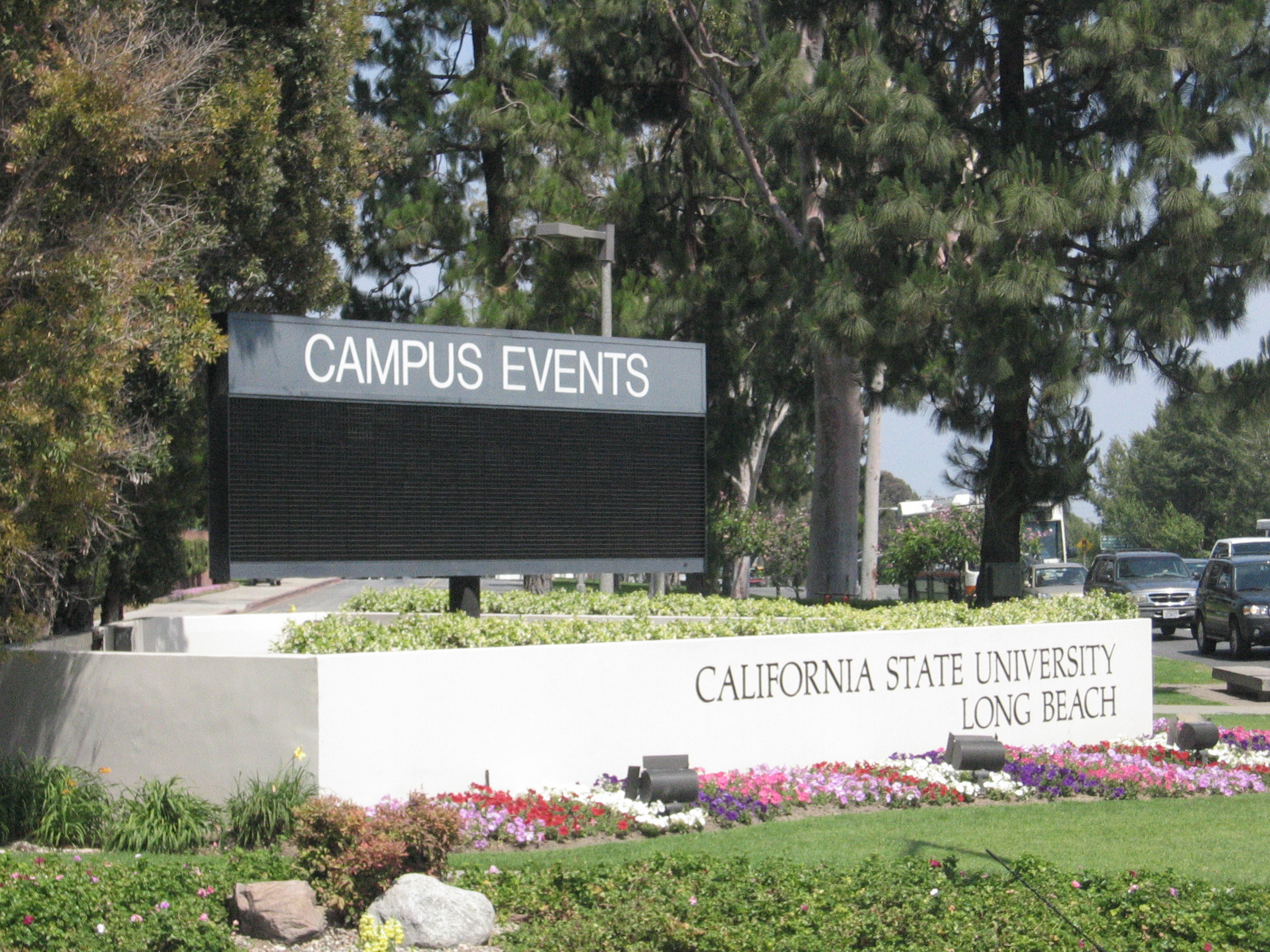 Csulb dating