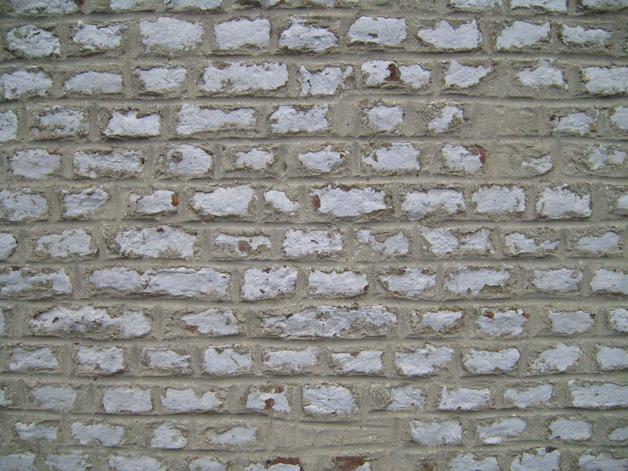 File:Decorative rock wall.jpg - Wikimedia Commons