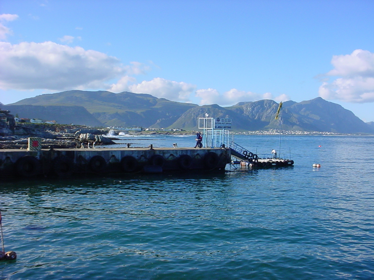 hermanus harbor