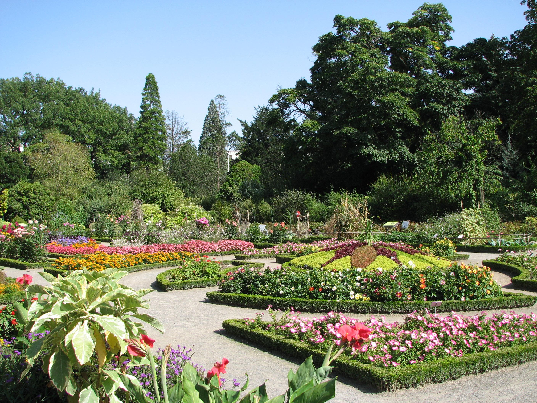 Jardin botanique de lyon for Jardin de the