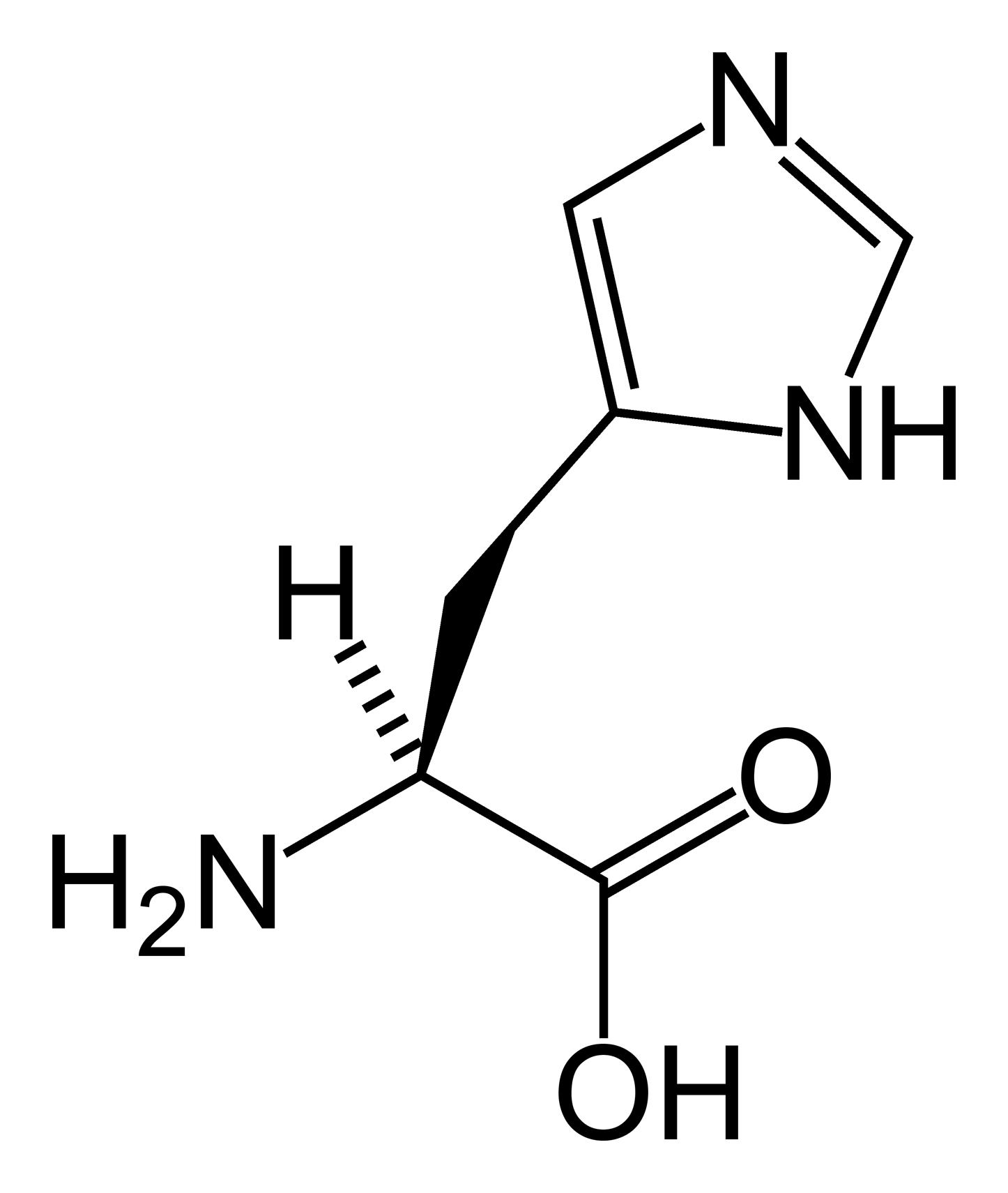File:L-histidine-skeletal.png - Wikipedia