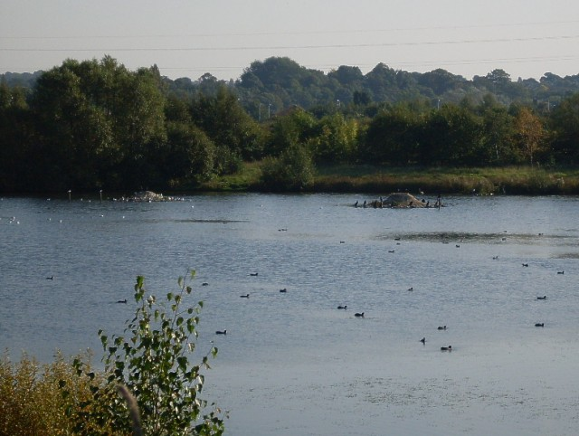 Nature Reserve - geograph.org.uk - 986041