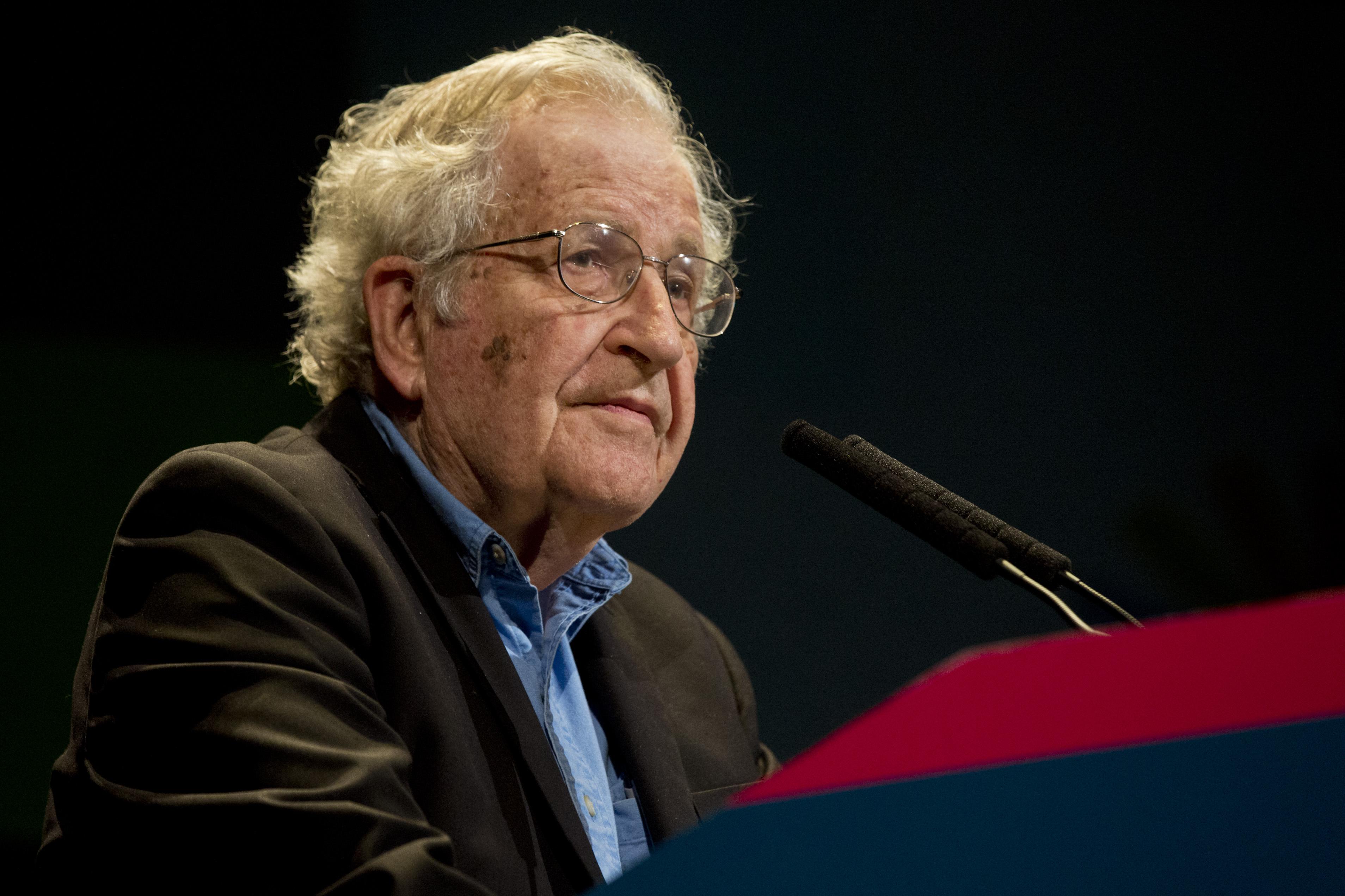 Noam Chomsky photo #100925, Noam Chomsky image