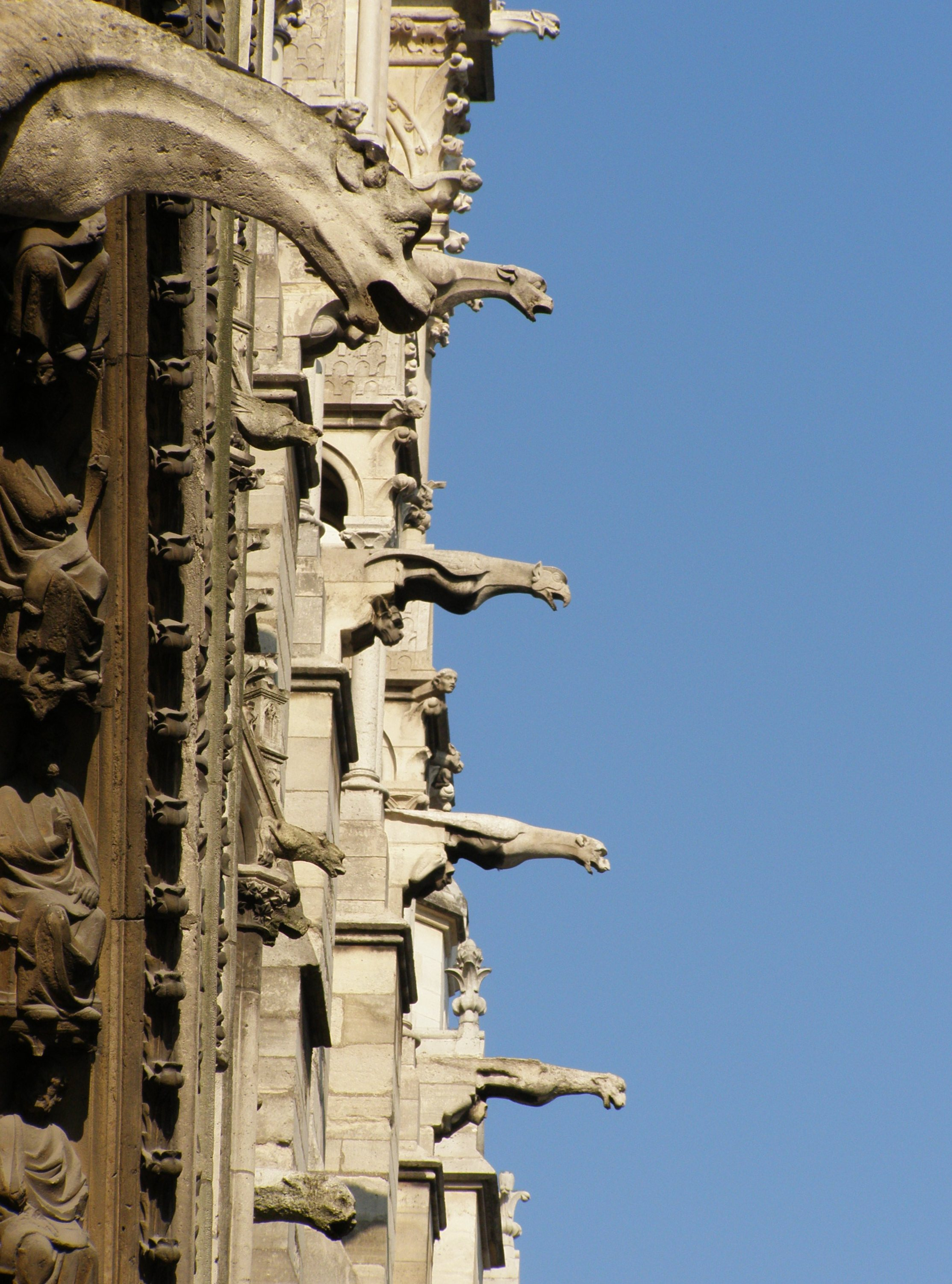 gallery for gothic cathedral gargoyles