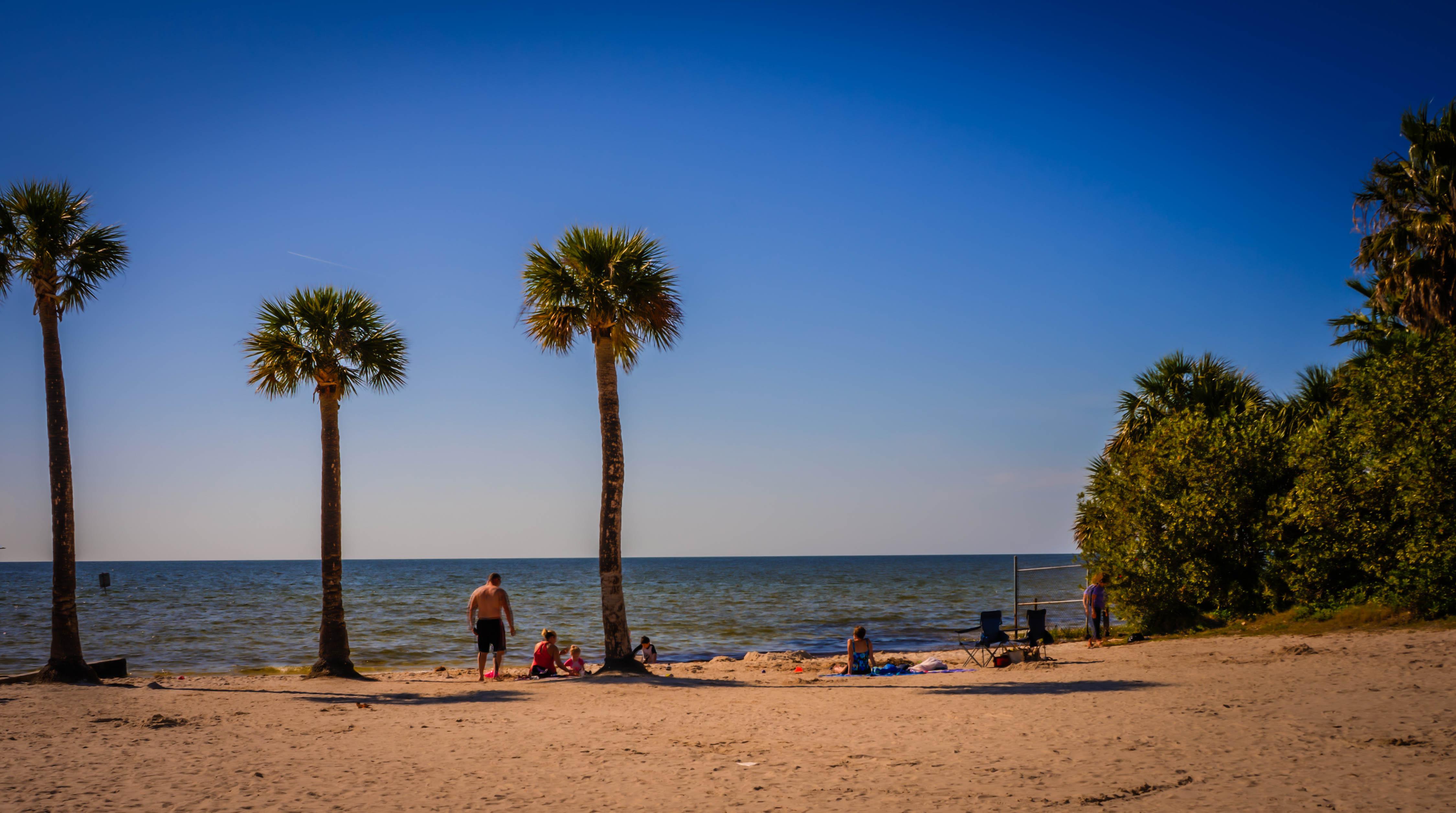File Pine Island Beach Hernando County Florida Panoramio 5