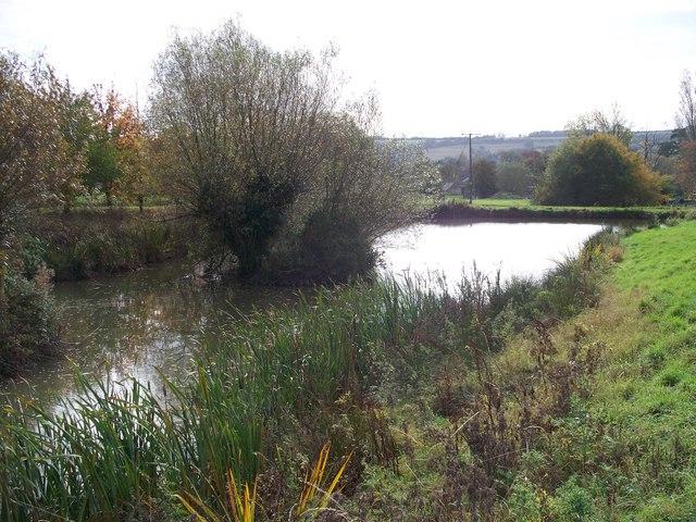 Pond at Long Compton - geograph.org.uk - 1556582