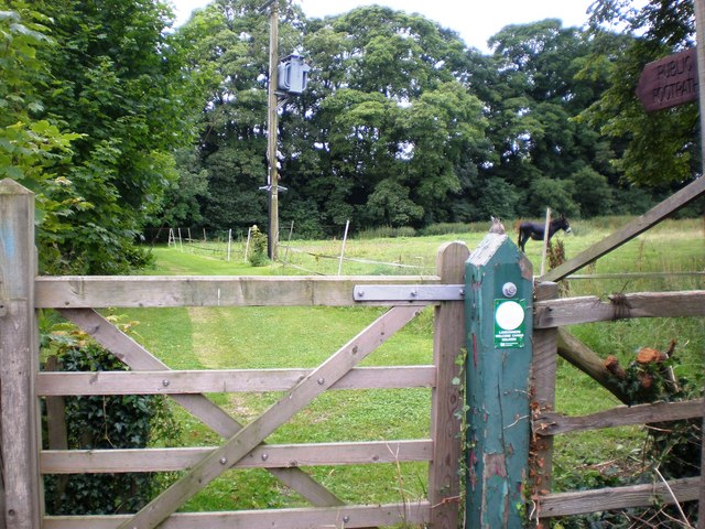 Public Footpath at Londesborough - geograph.org.uk - 1430421