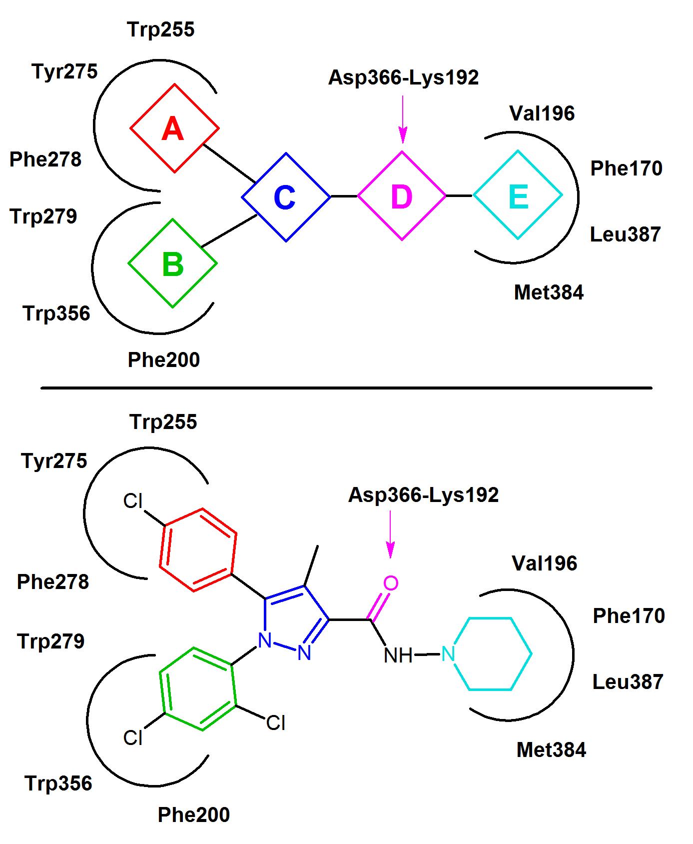 nicotine structure activity relationship of metformin