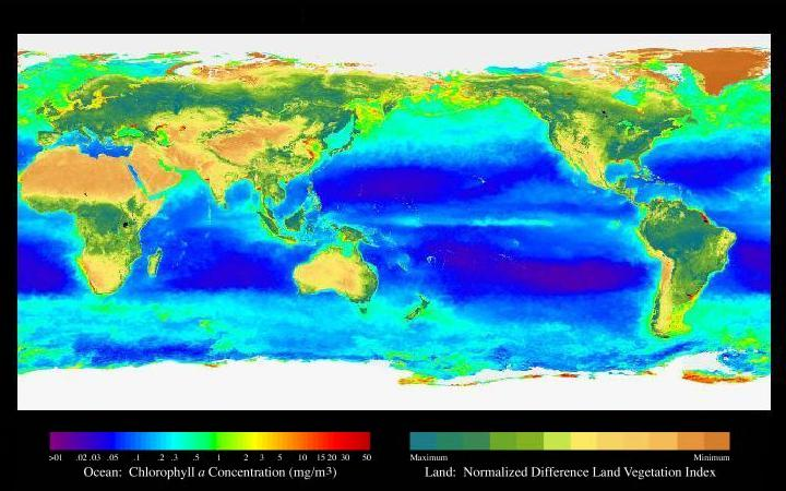 Fitxer:Seawifs global biosphere Centered on the Pacific.jpg