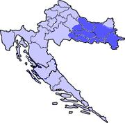 Slavonija - sudski vještak informatike i telekomunikacija Saša Aksentijević