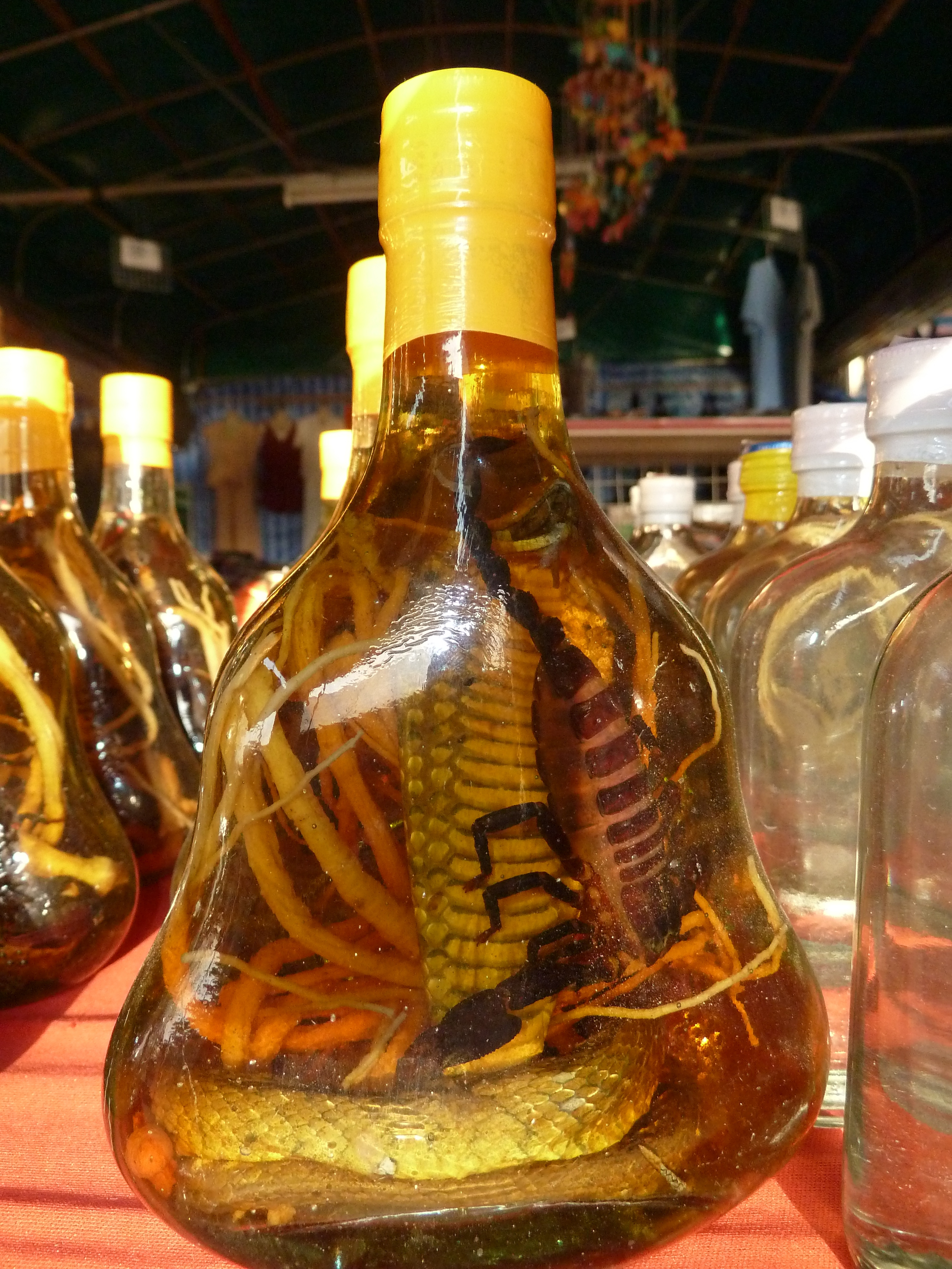 File:Snake wine P1110606.JPG - Wikimedia Commons