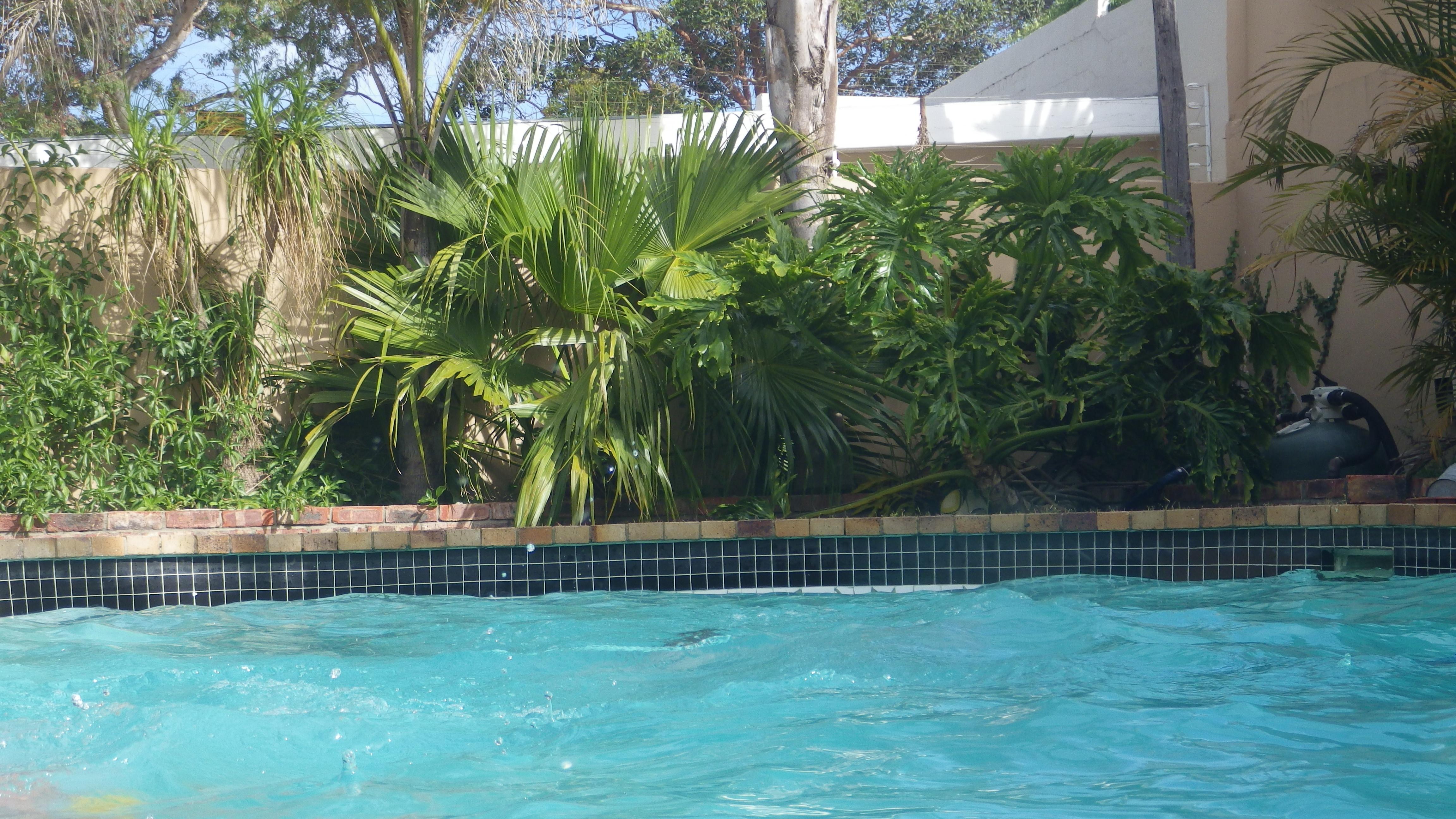 File Swimming Pool In Port Elizabeth South Africa Jpg Wikimedia Commons