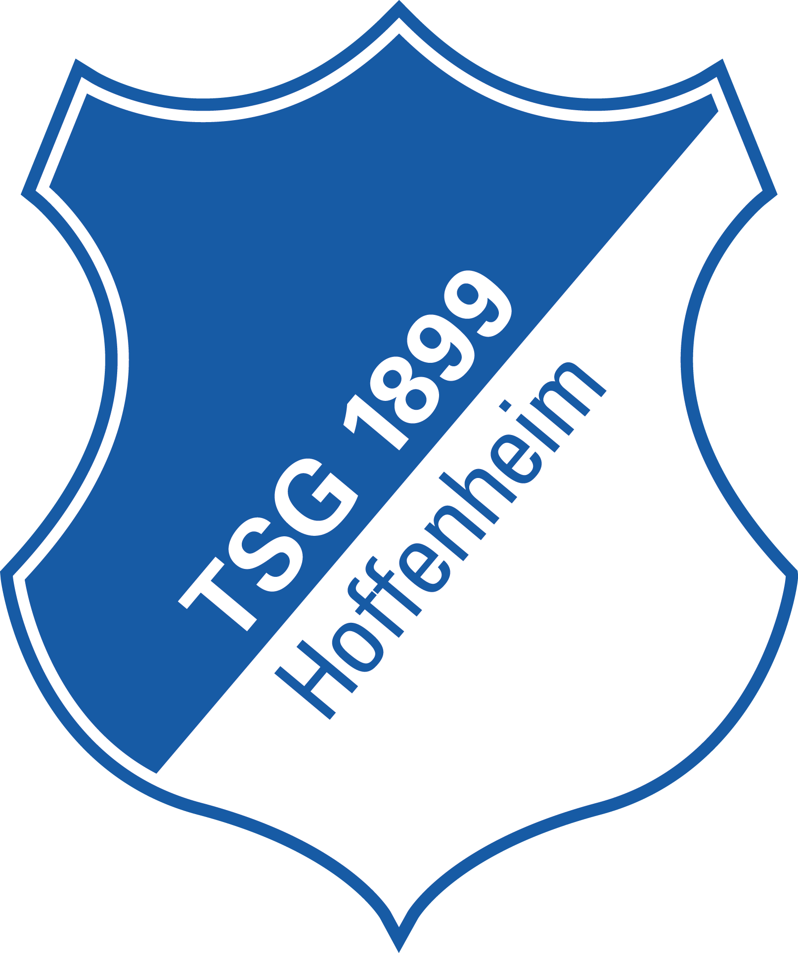 TSG Logo-Standard 4c.png