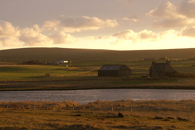 File:Transitory golden light, Baltasound - geograph.org.uk - 1190517.jpg