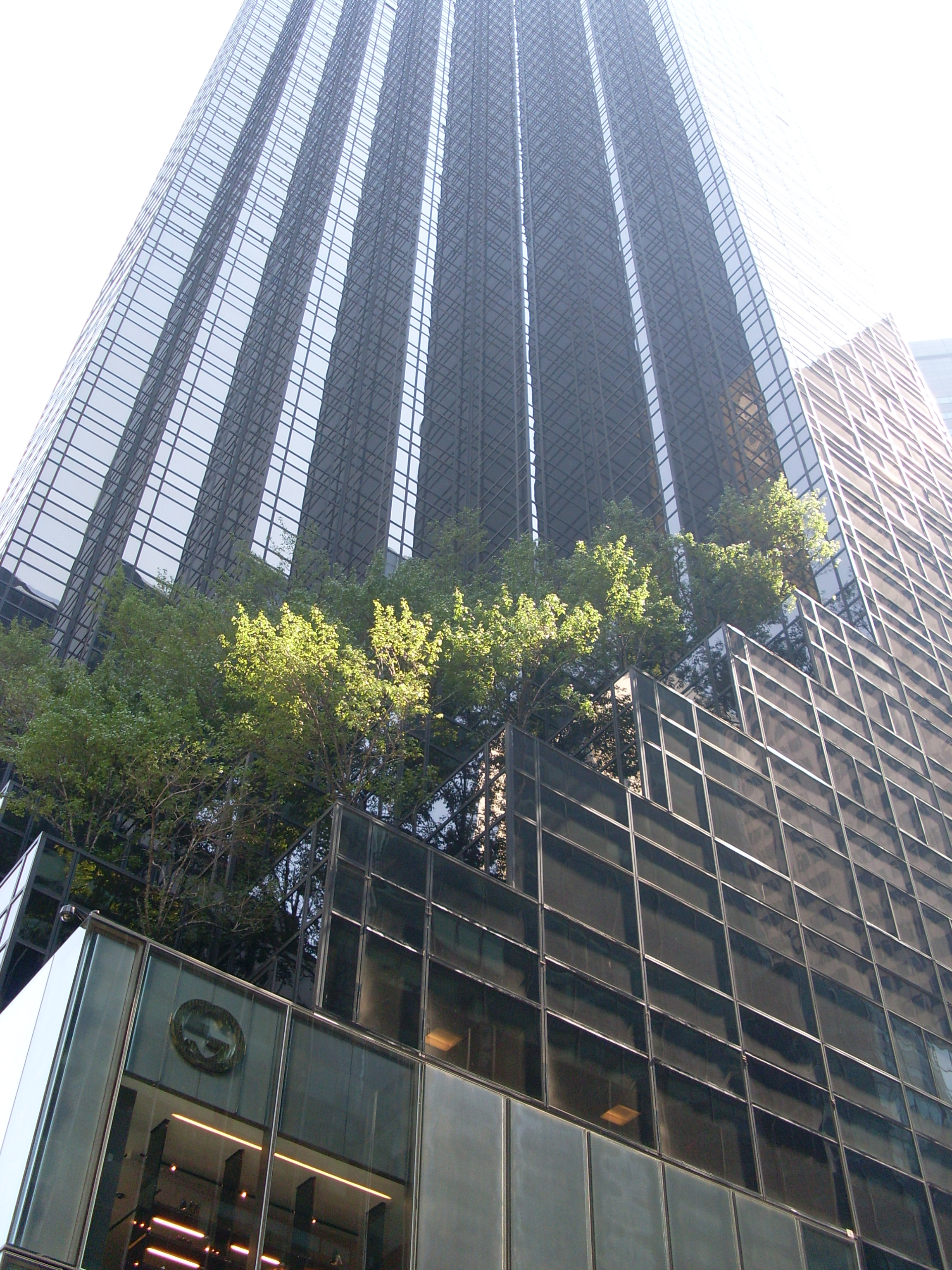 Trump Buildings In New York City