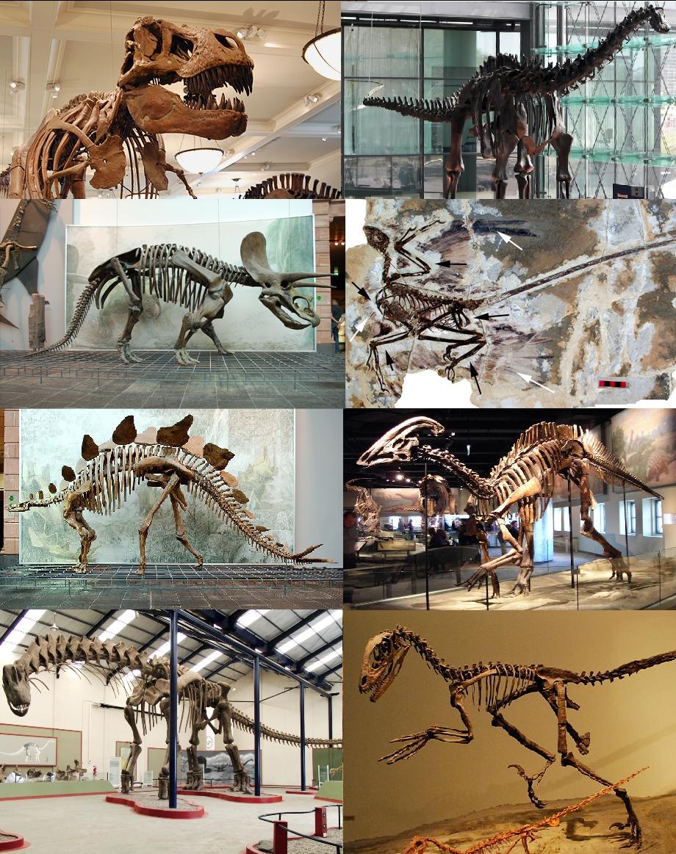 wann lebten dinosaurier