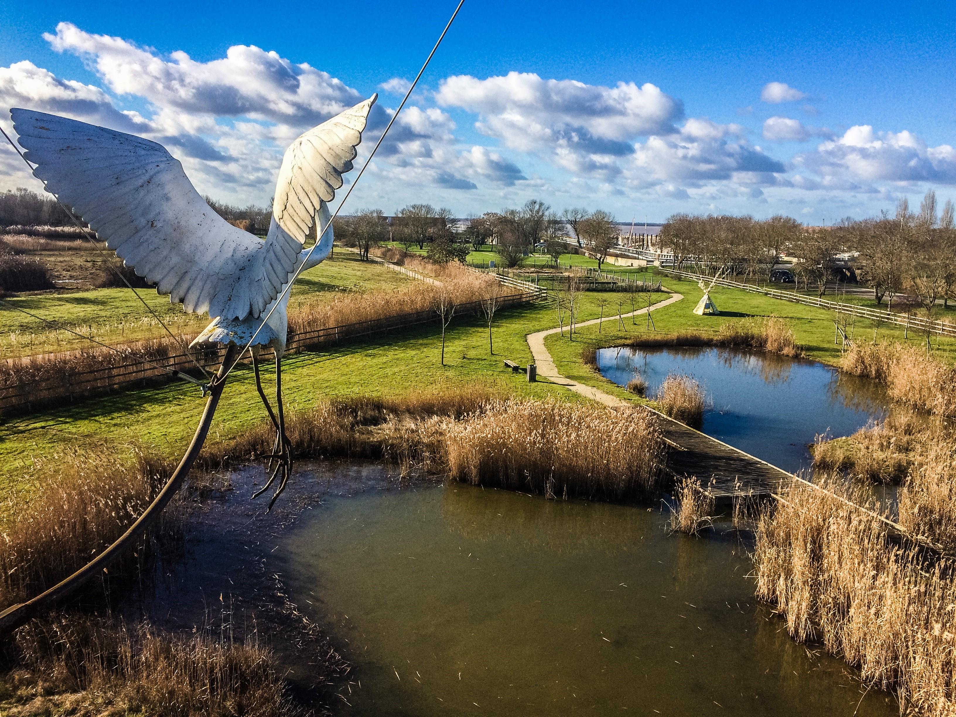 Sites de rencontre pour les ornithologues