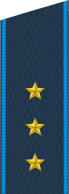 Погон старшего прапорщика ВВС с 2010 года.png