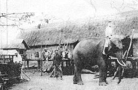 Tập tin:Alexandre Yersin - plateau Lang Biang 1893.jpg